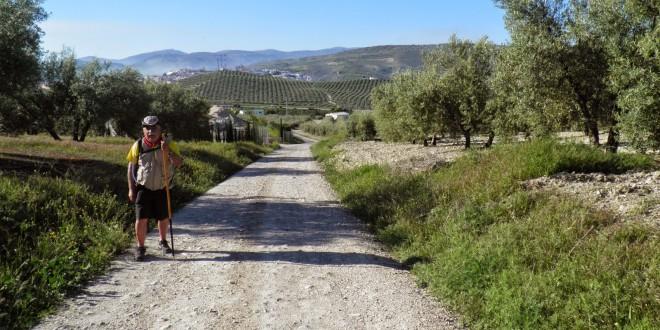 Imagen de archivo de un peregrino en un tramo del Camino Mozárabe a su paso por Baena.