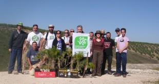 Imagen de archivo de un grupo de voluntarios de Groden-Ecologistas en Acción Baena en una actividad de reforestación. Foto: Groden.