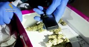 Detenidas seis personas por cultivo de marihuana. Foto: Guardia Civil Mº Interior