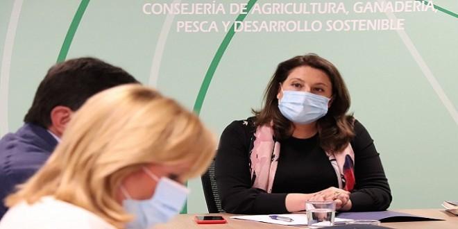 La consejera de Agricultura, Carmen Crespo, en la reunión de la Mesa de Interlocución Agraria. Foto: Junta de Andalucía.