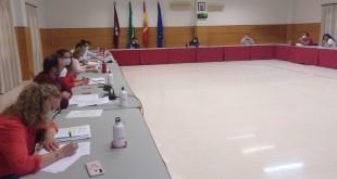 Pleno Ordinario del Ayuntamiento de Baena celebrado ayer en el salón de actos de la Escuela Taller. Foto: TV Baena.