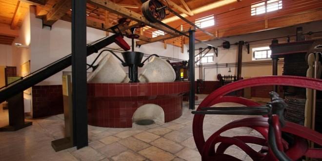 Museo del Olivar y el Aceite de Baena: Foto de archivo. TV Baena.